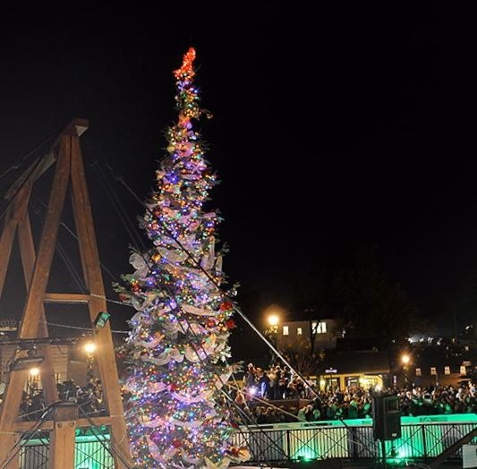 Lighting Of Christmas Tree 2014: Folsom Historic District Christmas Tree Lighting This