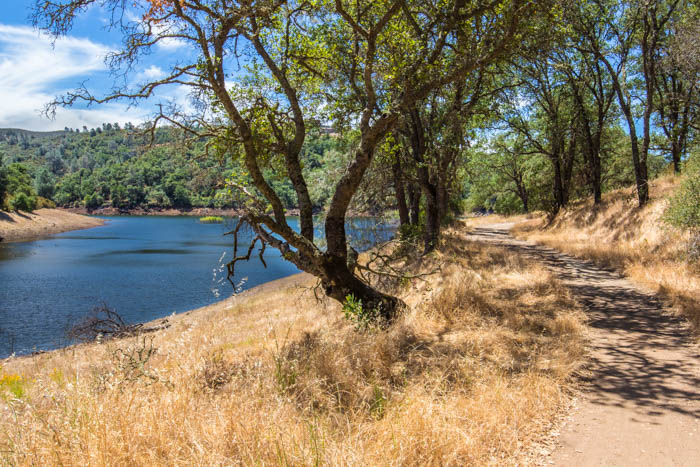 Salmon_Falls_Bridge_Trail_Folsom_Lake_Darrington_24