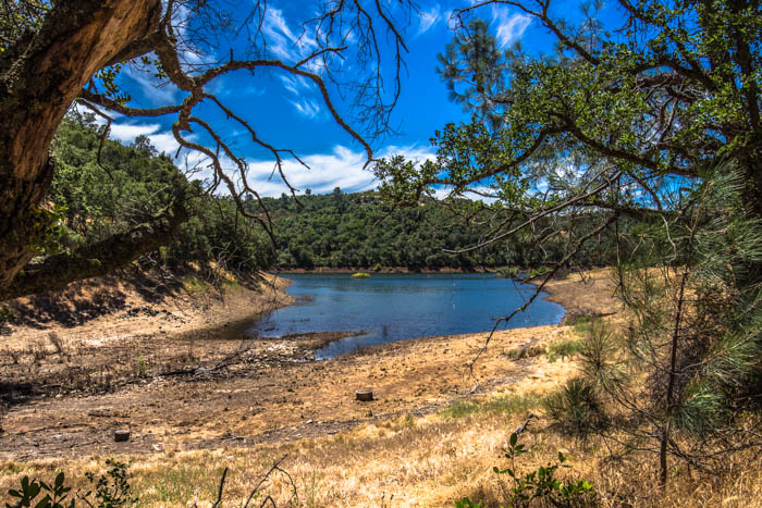 Salmon_Falls_Bridge_Trail_Folsom_Lake_Darrington_28