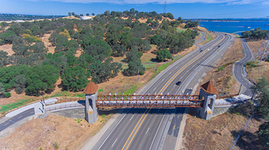 Johnny Cash Trail & Bridge - Feature